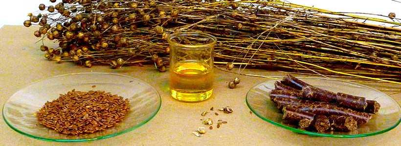 F.A.Q. #7: Sind pflanzliche Fette eine gute Omega-3-Quelle?
