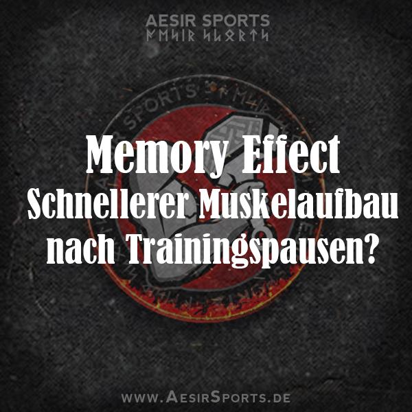 Memory Effect: Schnellerer Muskelaufbau nach Trainingspausen?
