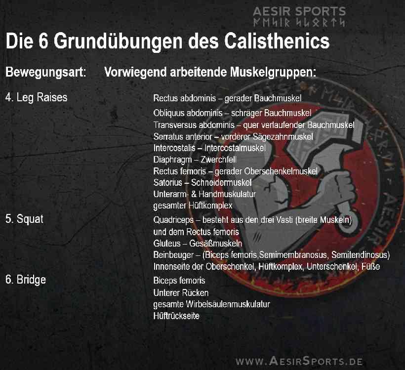 Calisthenics: Der spartanische Weg zu trainieren - Teil 2 – Die 6 Grundübungen des Calisthenics