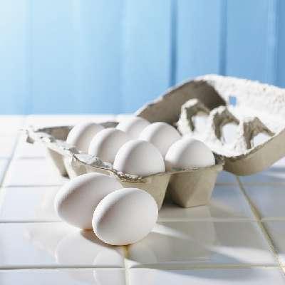 Alternative Proteinquellen - Eier