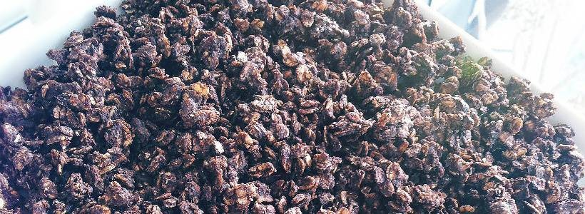 Hausgemachtes 5-Korn Müsli