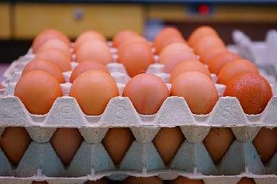 Richtline zur Proteinaufnahme #6: Erhöhe die Proteinzufuhr in der Diätphase