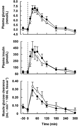 4 Wochen 30g resistente Stärke und Auswirkungen auf Blutzuckerkonzentration, Insulinausschüttung und Glukoseaufnahme der Muskulatur
