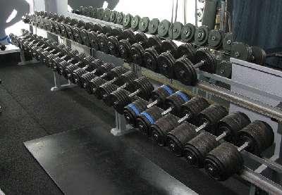 FÜr jeden was dabei: Die Kurzhanteln im PIT Leistungszentrum gehen bis zu 60 kg!