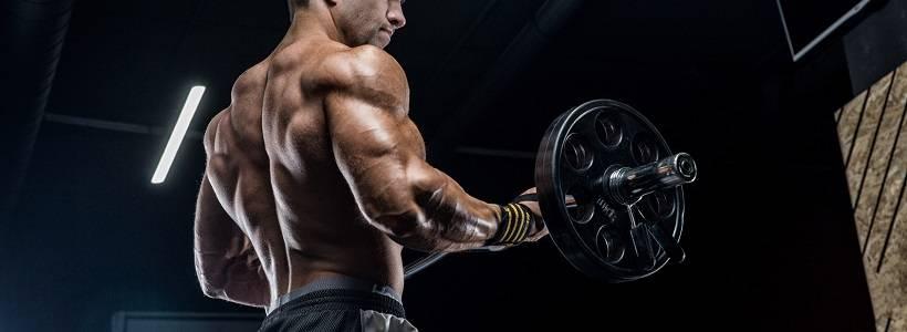 Der optimale Trainingszeitpunkt: Nutze deinen Biorhythmus für 84% mehr Muskulatur