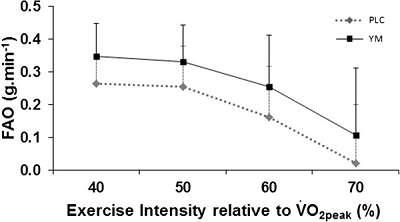 Yerba Mate Extrakt erhöht Fettverbrennung & Energieverbrauch beim Training um bis zu 24 %