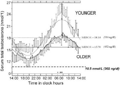 Tägliche Fluktuation des Serum-Testosteronspiegels in Jungen und Alten (Bildquelle: Raff, H. / Sluss, PM. (2008))