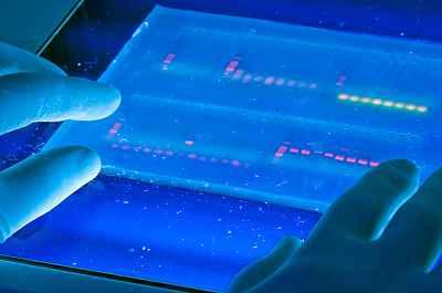 Du bist Deine fleischgewordene DNS