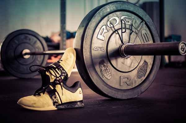 Training und Muskeln: Eine langfristige Investition in deine Gesundheit