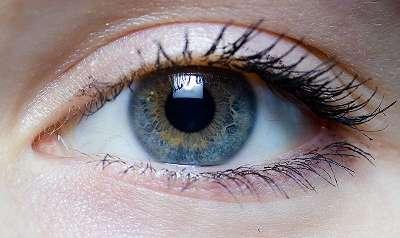 Astaxanthin für Augengesundheit? Das Antioxidans kann das Gewebe vor Strahlenschäden, Stickstoffspezies und Wasserperoxid schützen – und damit eine altersbedingte makulare Degeneration wohlmöglich reduzieren. (Bildquelle: Wikimedia.org / Laitr Keiows ; CC Lizenz)