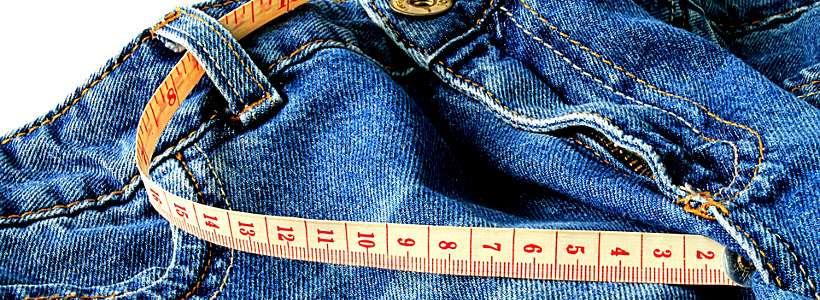 Darmbakterien – Und ihre Rolle im Kampf gegen die Pfunde – Teil II