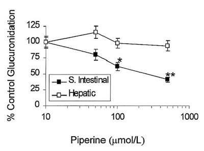Piperine als Aufnahmeverstärker: Möglich macht es eine Hemmung der Glucoronidierung. (Bildquelle: Inhumanexperiment.blogspot.de / Lambert et al. (2004))