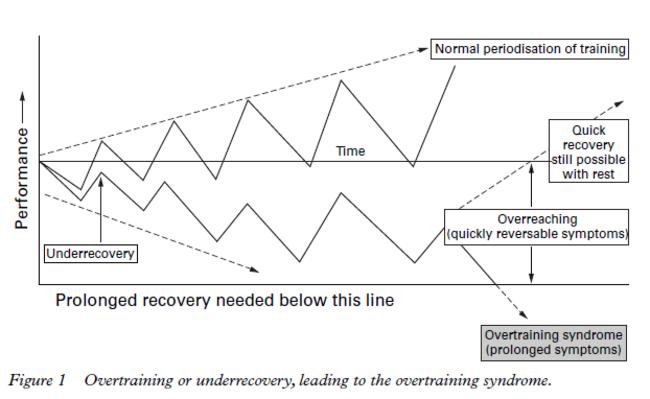 (Bildquelle: Budgett, R., et al. (1998))