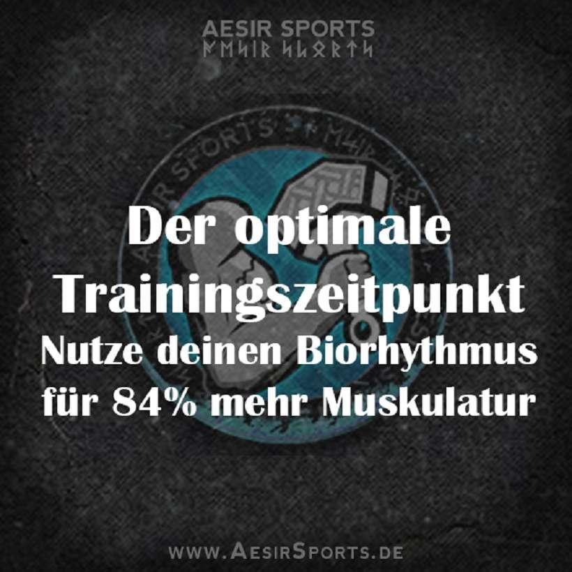 Optimaler Trainingszeitpunkt für Muskelaufbau & mehr Kraft: Kenne deinen Biorhythmus