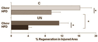 (Bildquelle: Ergo-Log / Woo et al. (2011))
