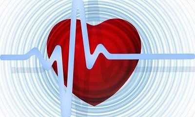 F.A.Q. #14: Sind gesättigte Fette schlecht für die Herz-Kreislauf-Gesundheit?