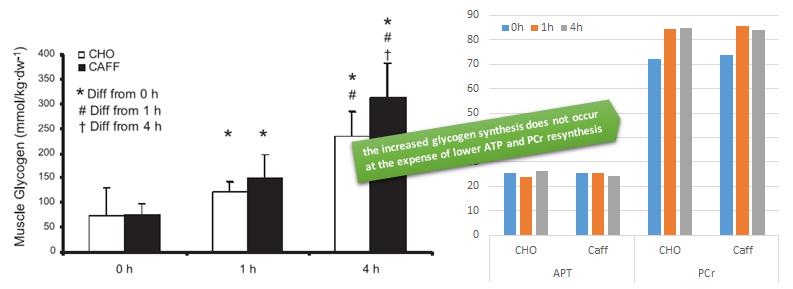 Wenig Zeit, bis zum nächsten Wettkampf? Die Einnahme von Kohlenhydraten in Kombination mit Koffein, kann die Glykogenresynthese maßgeblich beschleunigen. (Bildquelle: Suppversity / Peddersen et al. (2008))