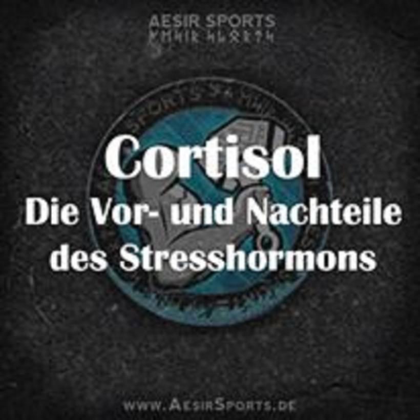 Stresshormon Cortisol: Über die Vorteile & Nachteile