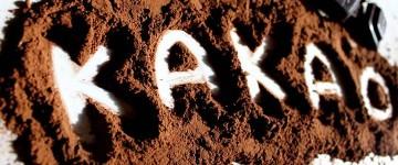 Kakao (Epicatechin) als Myostatinblocker? | Studien-Review