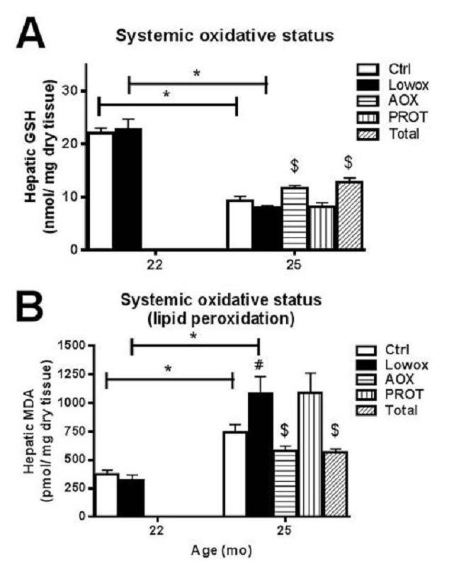 Whey, Leucin & Antioxidantien Kombi = Verbesserte Muskelfunktion & Muskelqualität mit zunehmendem Alter? | Studien Review