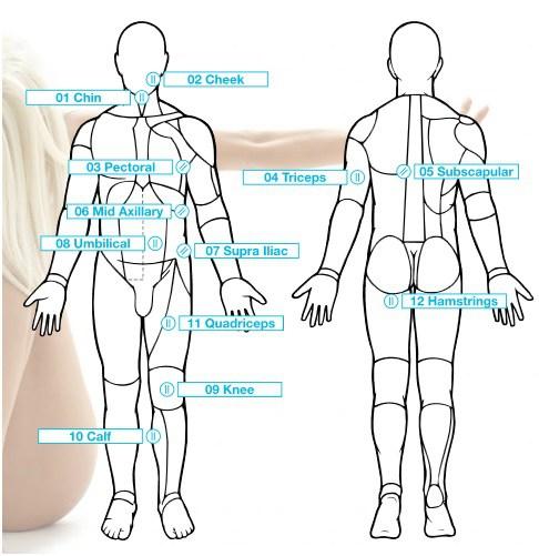 BioSignature / Personal Hormonal Profiling, basierend auf Messergebnissen von 12 Hautfaltendicken wird deine hormonelle Balance ermittelt.