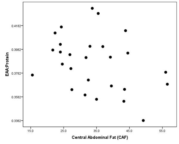 Zusammenhang zwischen Bauchfett und Qualität der Proteineinnahme