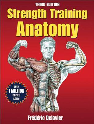 Muskelfaserspezifische Hypertrophie: Funktionale Anatomie