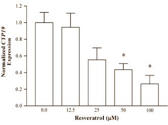 Resveratrol als Aromatase-Hemmer Cytochrom P450