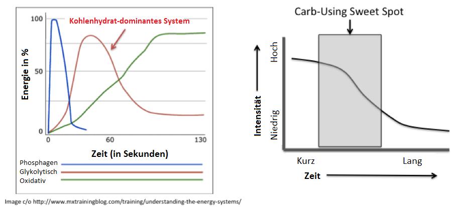Das Energiebereitstellungssystem: Steigt die körperliche Intensität an, steigt der Energiebedarf - und damit auch der Bedarf schnell-verfügbarer Energie (Kohlenhydrate aus Muskelglykogen)