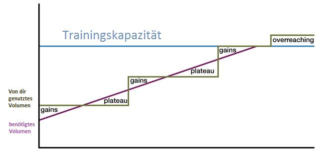 Rolle von Trainingskapazität und Volumen