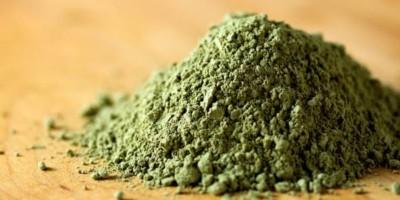 Grüner Tee Extrakt für bessere Glykogenresynthese | Post Workout Supplementation