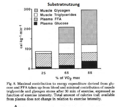 substratnutzung