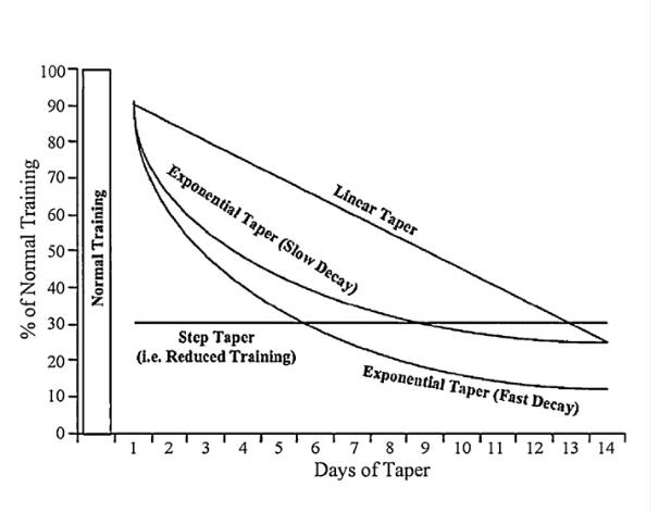 Tapering & Peaking | Was ist es und wie funktioniert es?