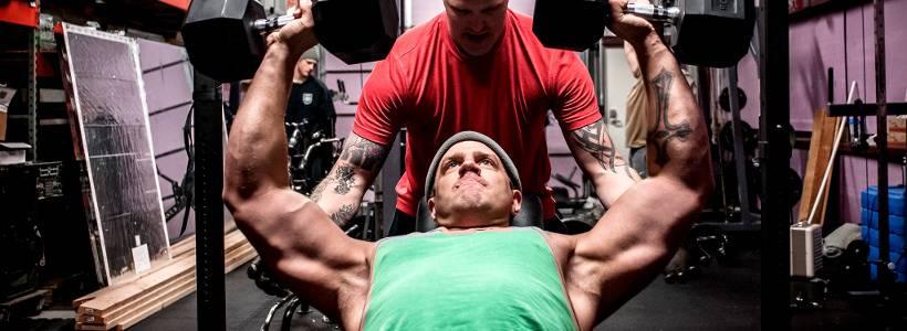 Wie oft trainieren? | Optimale Trainingsfrequenz pro Muskelgruppe für Muskelaufbau
