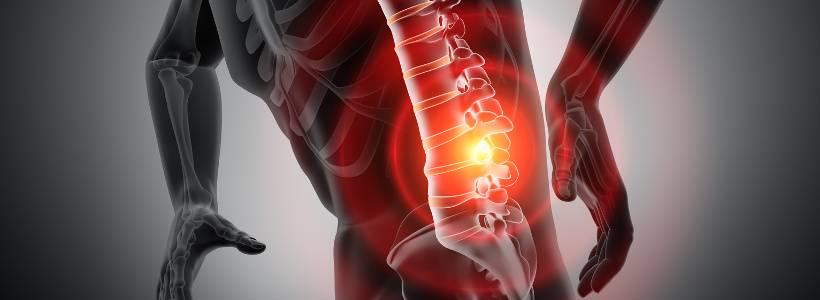 Training & Funktion der Bauchmuskulatur - Teil 2 | Bauchtraining & Rückenbeschwerden?