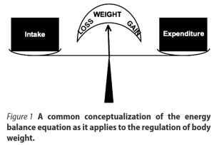 Mythos: Energiebilanz diktiert Gewichtsveränderung
