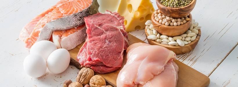 Eine zusätzliche Proteinaufnahme verbessert die Körperkomposition