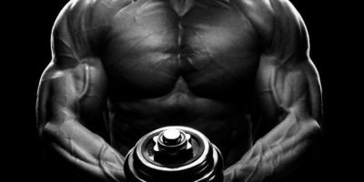 Muskelspezifische Hypertrophie Addendum: Intensität und Faserspezifische Hypertrophie
