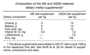 Ernährung und Epigenetik