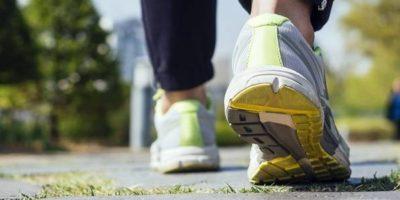 Low Carb High Fat optimiert Fettverbrennung, aber verschlechtert die Leistung | Studien Review