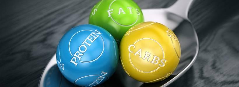 Die richtige Kohlenhydrat- & Fettzufuhr zu Optimierung deiner der Gesundheit – Teil 1