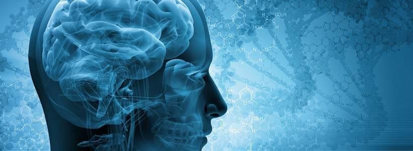 Die Wahrheit über Aspartam – Teil 5: Neurologische Auswirkungen