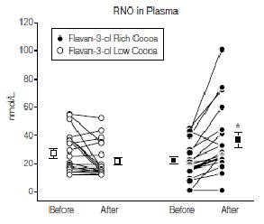 Kakao Flavonole erhöhen NO-Konzentration