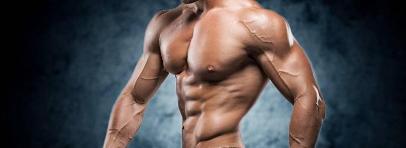 Der magische Wiederholungsbereich für den Muskelaufbau: Gibt es ihn wirklich?