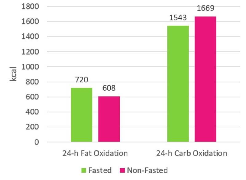 Hat Cardio auf nüchternen Magen einen Repartitionierungs-Effekt?