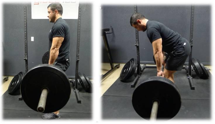 Kreuzheben Ausführung: Amerikanisches Kreuzheben: Neutrale Haltung der Wirbelsäule am unteren Ende der Bewegung, eingerundeter oberer Rücken und nach hinten gekipptes Becken am oberen Ende der Bewegung