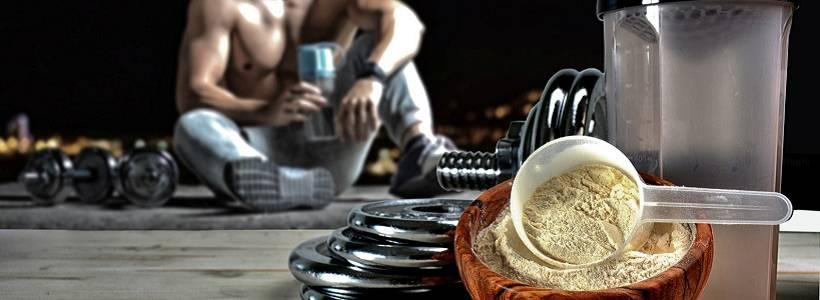 Protein & Proteinzufuhr in der Diät: Ein Review zu Eric Helms' Forschung