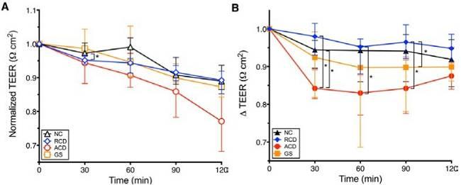 Teil 2: Harte Fakten: Mechanismen der Glutenüberempfindlichkeit