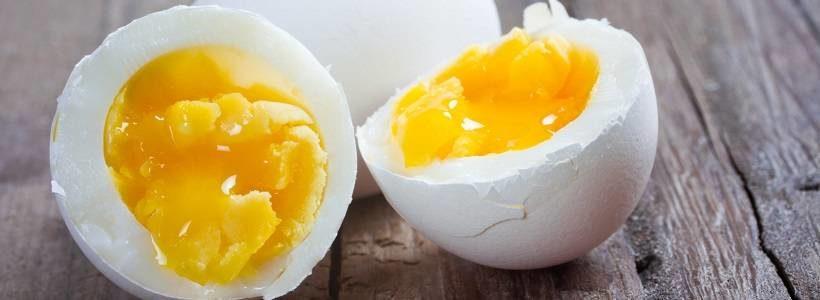 Cholesterin – eine vergessene, anabole Substanz?