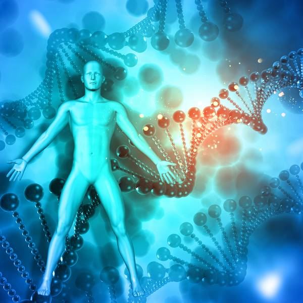 "Gibt es das ""Fett-Gen""? | Set-Point, Körperfettverteilung & Körperfettzellen"